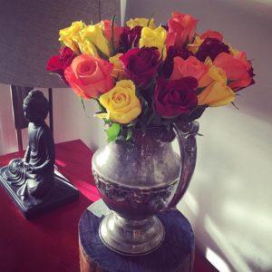 roses | Joanne Fedler