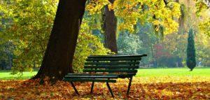 A Simple Exchange of Niceties by Joanne Fedler